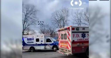 Man shot at NYCHA in the Bronx