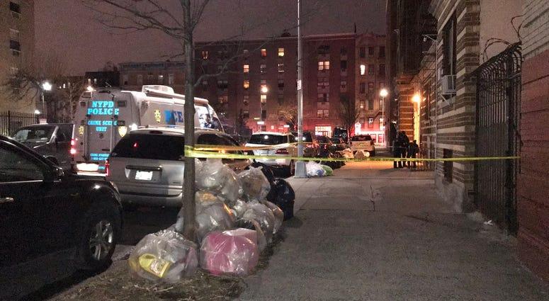 Bronx mom son murdered