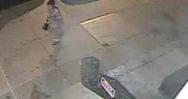 Suspect in burning of gay pride flags