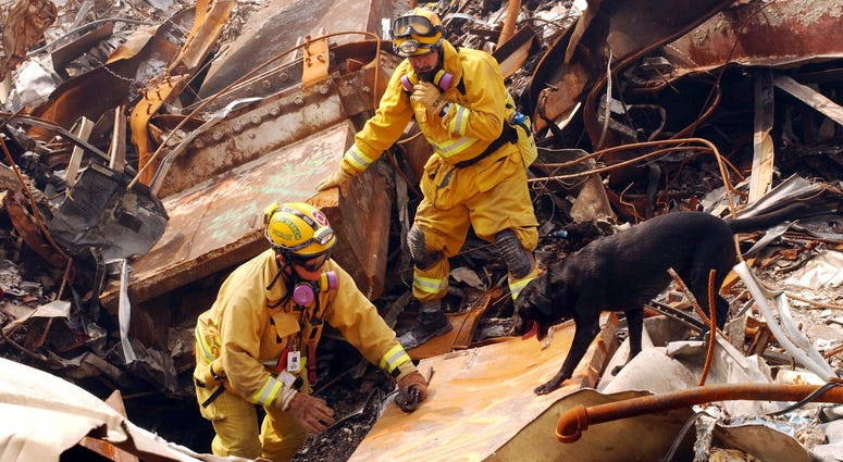 9/11 search and rescue dog