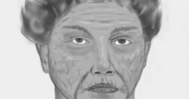 Sketch of woman accused of luring teen girl into Great Neck car