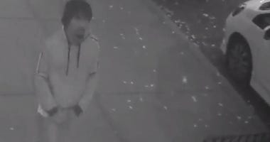 Suspect in Park Slope attempted rapes