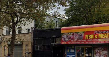Bronx fatal stabbing