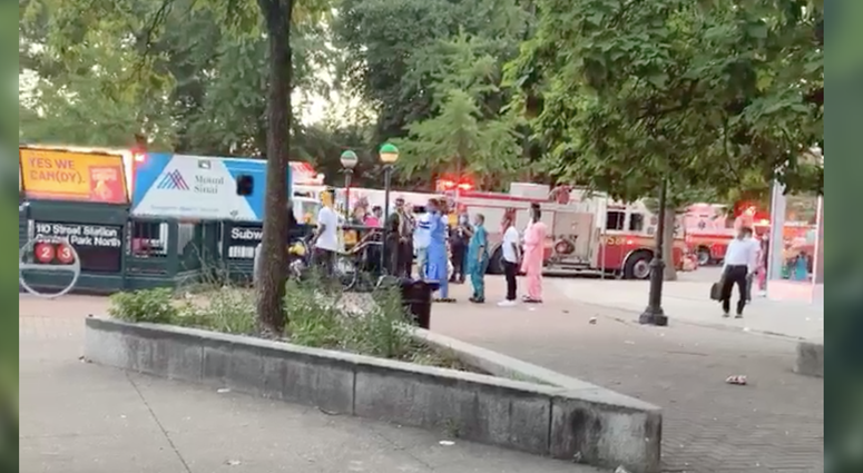 person struck 110 Central Park North
