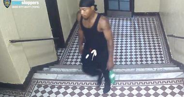 Bronx Robbery