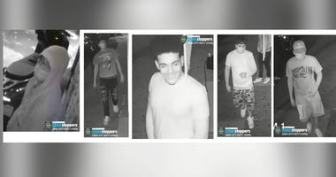 NYPD Queens sneaker robbery, stab