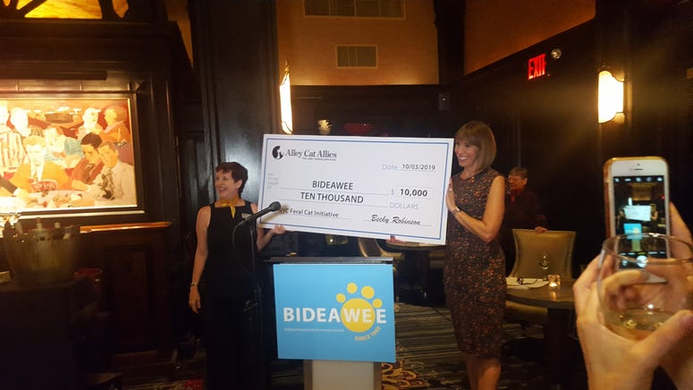 Bideawee Expands Mission Adding Nyc Feral Cat Initiative 1010 Wins