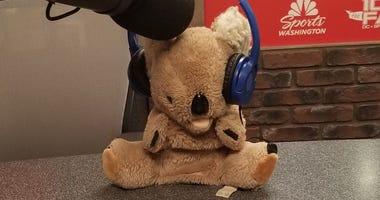 Zippy_Koala