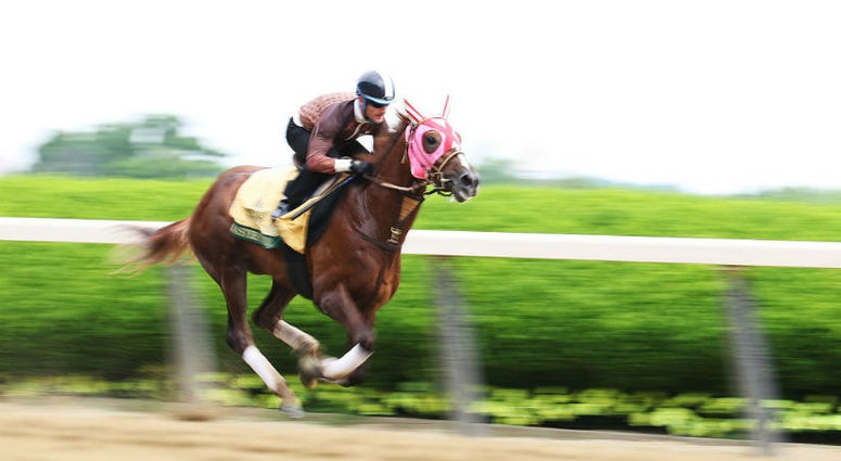 In Belmont Stakes, don't pass on Japan's Master Fencer.