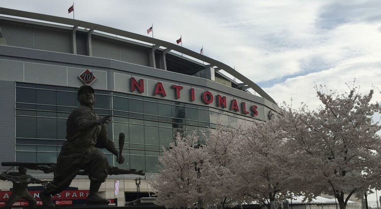Spring has sprung at Nats Park.