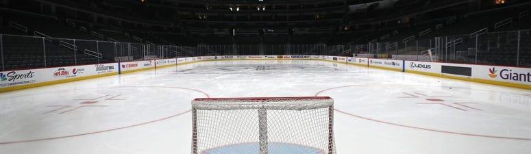 The NHL's radical 'biosphere' plan to save 2019-20 season