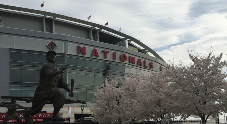 Spring has sprung at Nats Park.