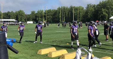 Ravens Training Camp