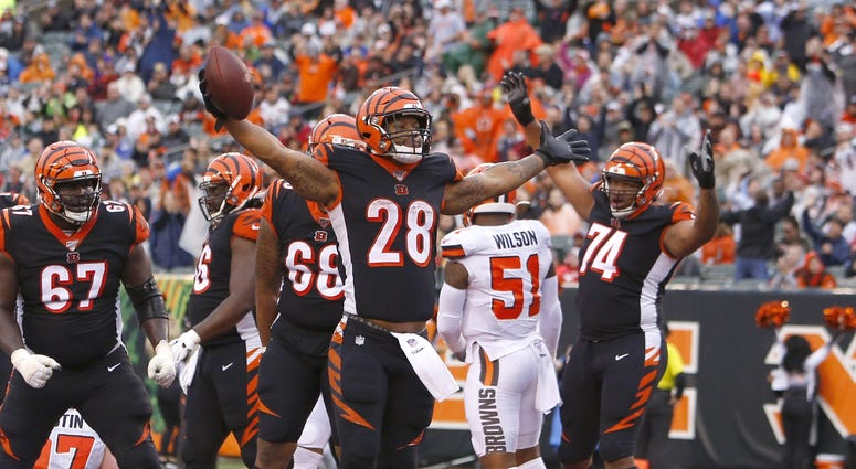 Cincinnati Bengals running back Joe Mixon (28) reacts after scoring touchdown against the Cleveland Browns during the second half at Paul Brown Stadium. Mandatory Credit: David Kohl-USA TODAY Sports