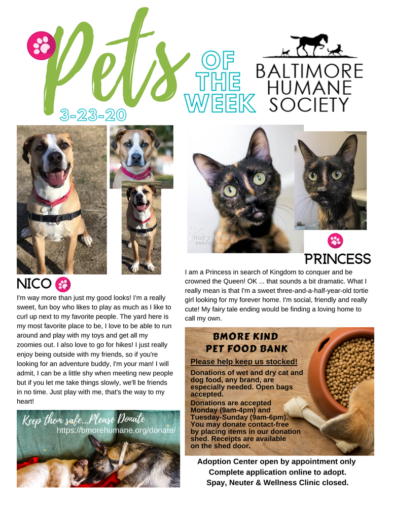 PNG Pets of the Week 3-23-20.png
