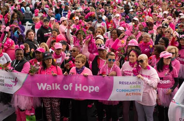 Komen Maryland More Than Pink Walk