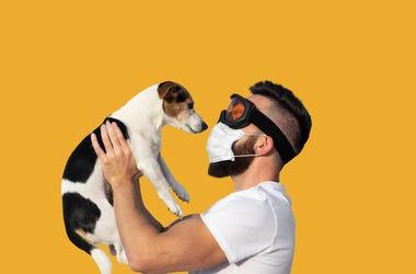 your dog smells