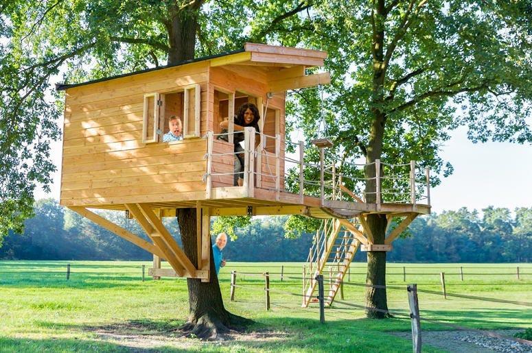 ramoan treehouse 2020