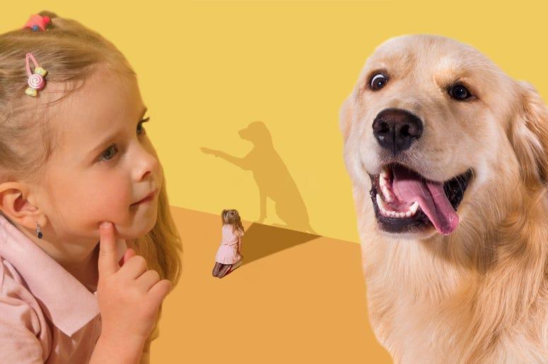 avery harris dog