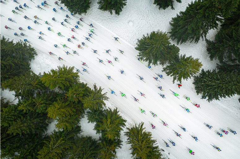 "The photo shows cross-country skiers during the Ski Racing Festival ""Bieg Piastów"" competition in Poland. From the sky, the skiers look like a shoal of colorful fish floating among coral reefs."
