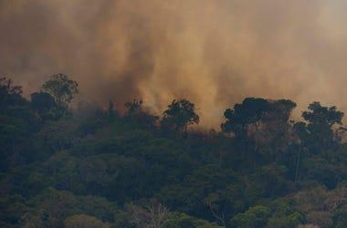 El fuego consume la jungla cerca de Porto Velho, Brasil, el viernes 23 de agosto de 2019. Los expertos estatales brasileños han reportado un récord de casi 77.,000 incendios forestales en todo el país en lo que va del año, un 85% más que en el mismo perío