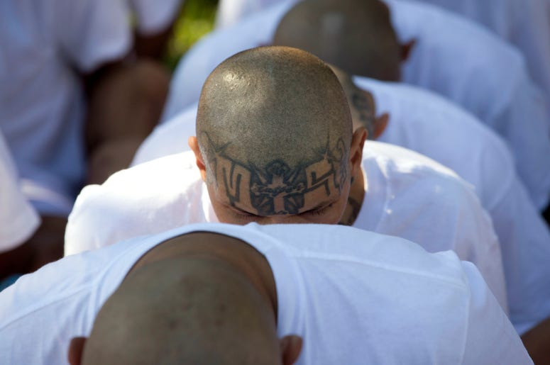 ombres encarcelados identificados por las autoridades como miembros de la Mara Salvatrucha (MS) están sentados esposados mientras son transferidos a la prisión de alta seguridad de Zacatraz en Zacatecoluca, El Salvador.