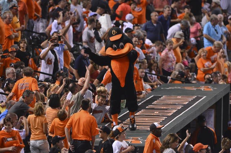 Orioles mascot at Camden Yards