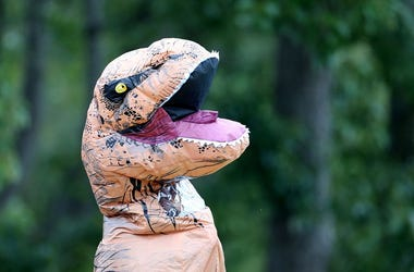 A supporter wears a dinosaur costume during day three of the First Test match