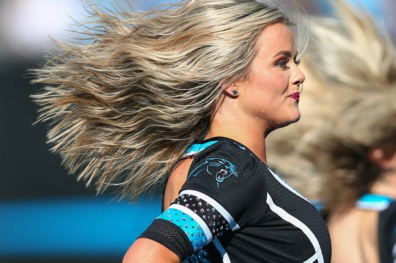 he Carolina Panthers cheerleaders perform during the second quarter against the Washington Redskins at Bank of America Stadium.