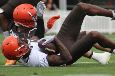 Browns receiver Rashard Higgins makes a diving catch during a training camp practice on Sunday, July 29, 2018