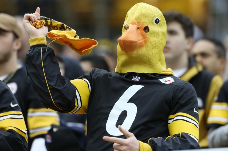 A Pittsburgh Steelers fan cheers against the Cleveland Browns during the second quarter at Heinz Field.