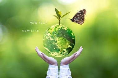Sustainable 2020