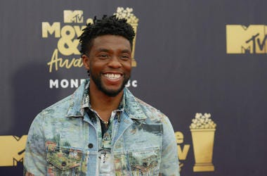 6/16/2018 - Chadwick Boseman attending the 2018 MTV Movie and TV Awards held at the Barker Hangar in Los Angeles,