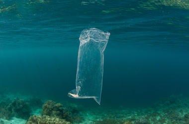 A single plastic bag in the ocean