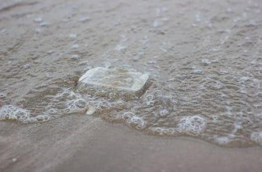 Phone in ocean