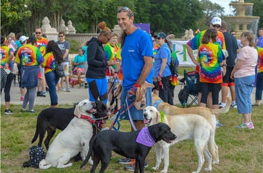 Paws for Peace Walk