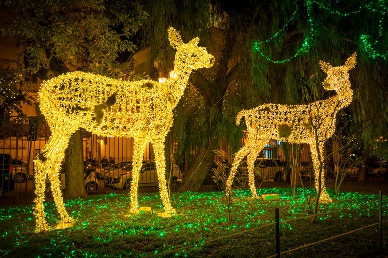 Light Up Deer