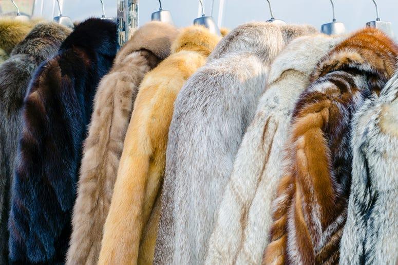 Peta donated several coats to DC homeless shelter.