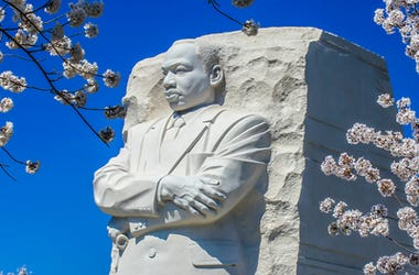 Dr. Martin Luther King, Jr. memorial tidal basin cherry blossoms