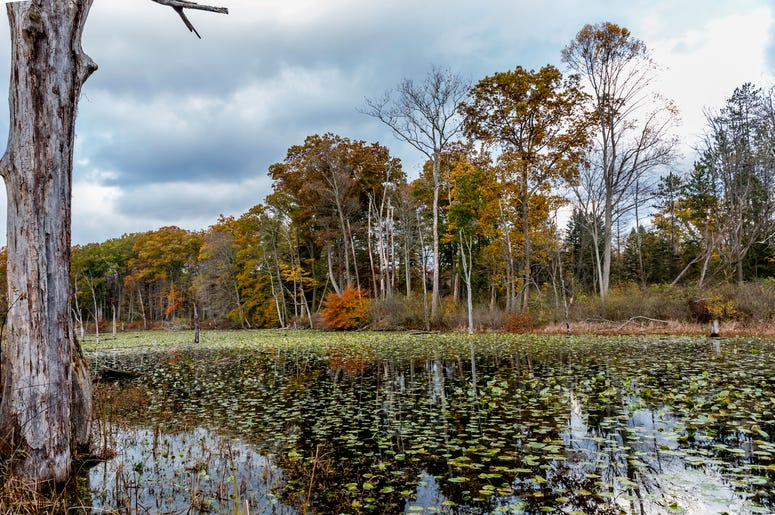 oxbow lagoon North Chagrin nature reservation Ohio metroparks