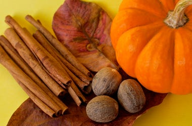 Ingredients for making pumpkin spice - stock photo Autumn with pumpkins and cinnamon and nutmeg