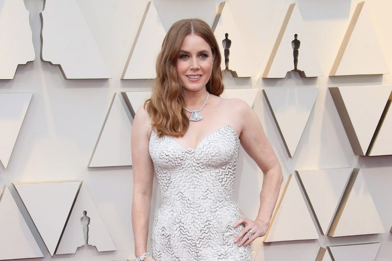 February 24, 2019; Los Angeles, CA, USA; Amy Adams arrives at the 91st Academy Awards at the Dolby Theatre. Mandatory Credit: Dan MacMedan-USA TODAY NETWORK