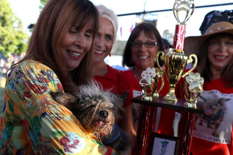 PETALUMA, CALIFORNIA - JUNE 21: Yvonne Morones (L) holds her dog Scamp the Tramp after winning the World's Ugliest Dog contest at the Marin-Sonoma County Fair on June 21, 2019 in Petaluma, California. A dog named Scamp the Tramp from Santa Rosa, Californi
