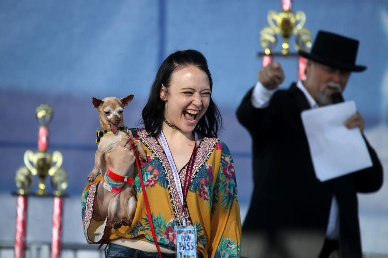 PETALUMA, CALIFORNIA - JUNE 21: Molly Horgan holds her dog Tostito during the start of the World's Ugliest Dog contest at the Marin-Sonoma County Fair on June 21, 2019 in Petaluma, California. A dog named Scamp the Tramp from Santa Rosa, California won th