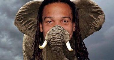 Elephant or Crowder