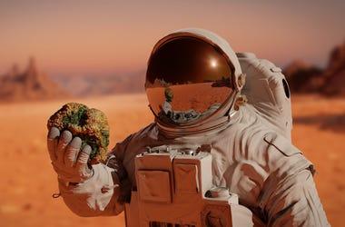 Astronaut Holding Rock On Mars