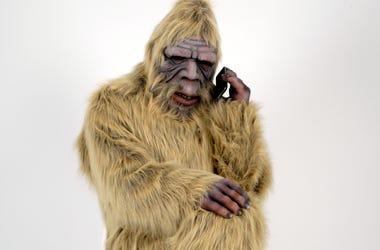 Bigfoot Skunk Ape