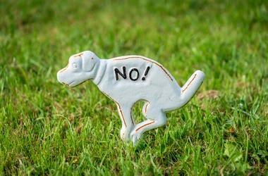 No Dog Poo