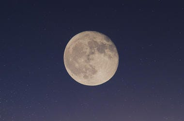 People Looking At Moon
