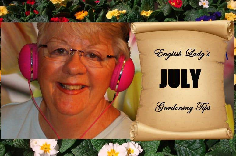 English Lady July Gardening Tips